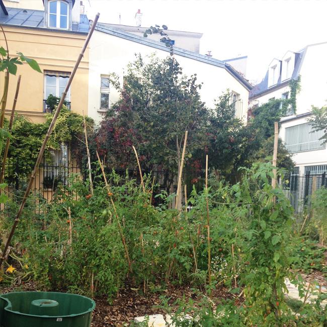 potager-paris-jardin-partage